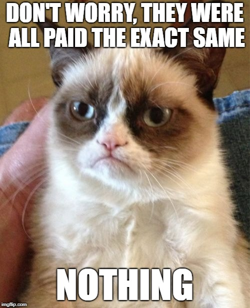 Grumpy Cat Meme | DON'T WORRY, THEY WERE ALL PAID THE EXACT SAME NOTHING | image tagged in memes,grumpy cat | made w/ Imgflip meme maker