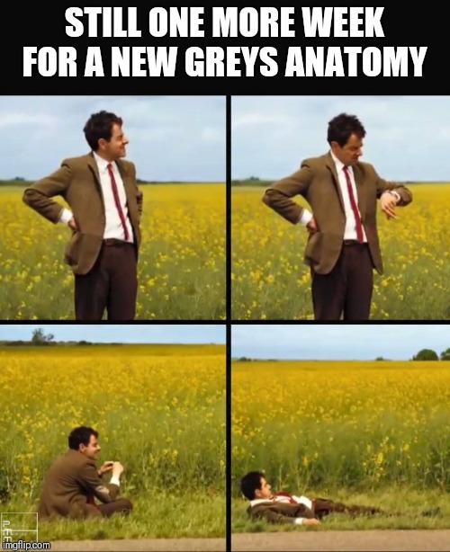 Mr bean waiting | STILL ONE MORE WEEK FOR A NEW GREYS ANATOMY | image tagged in mr bean waiting | made w/ Imgflip meme maker