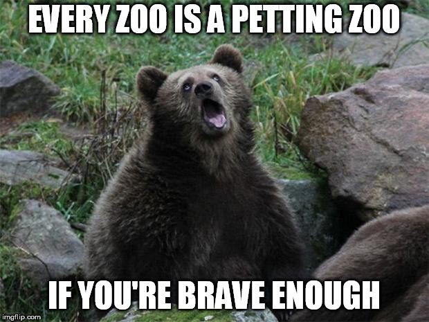 Sarcastic Bear | EVERY ZOO IS A PETTING ZOO IF YOU'RE BRAVE ENOUGH | image tagged in sarcastic bear | made w/ Imgflip meme maker