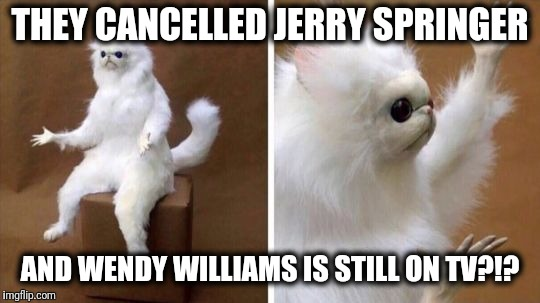 WTF unidentified animal | THEY CANCELLED JERRY SPRINGER AND WENDY WILLIAMS IS STILL ON TV?!? | image tagged in wtf cat,jerry springer,wendy williams | made w/ Imgflip meme maker