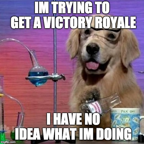I Have No Idea What I Am Doing Dog | IM TRYING TO GET A VICTORY ROYALE I HAVE NO IDEA WHAT IM DOING | image tagged in memes,i have no idea what i am doing dog | made w/ Imgflip meme maker