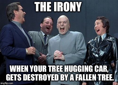 Laughing Villains Meme | THE IRONY WHEN YOUR TREE HUGGING CAR, GETS DESTROYED BY A FALLEN TREE. | image tagged in memes,laughing villains | made w/ Imgflip meme maker