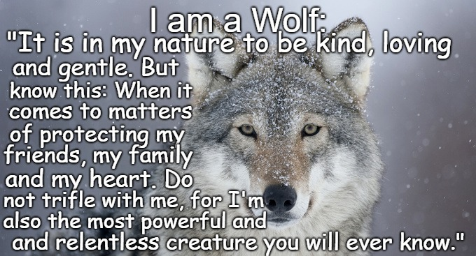 "I Am A Wolf It Is In My Nature To Be Kind | I am a Wolf: and relentless creature you will ever know."" ""It is in my nature to be kind, loving and gentle. But know this: When it comes to 