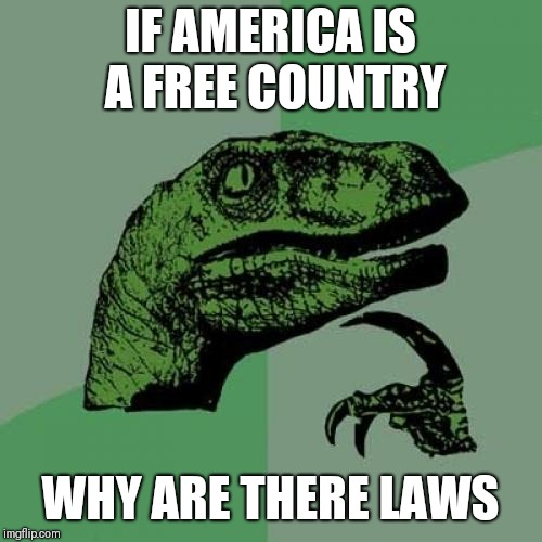 Philosoraptor | IF AMERICA IS A FREE COUNTRY WHY ARE THERE LAWS | image tagged in memes,philosoraptor | made w/ Imgflip meme maker