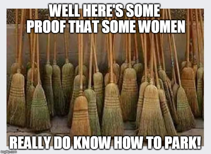 Well I'll be... | WELL HERE'S SOME PROOF THAT SOME WOMEN REALLY DO KNOW HOW TO PARK! | image tagged in women drivers,parking,witches | made w/ Imgflip meme maker