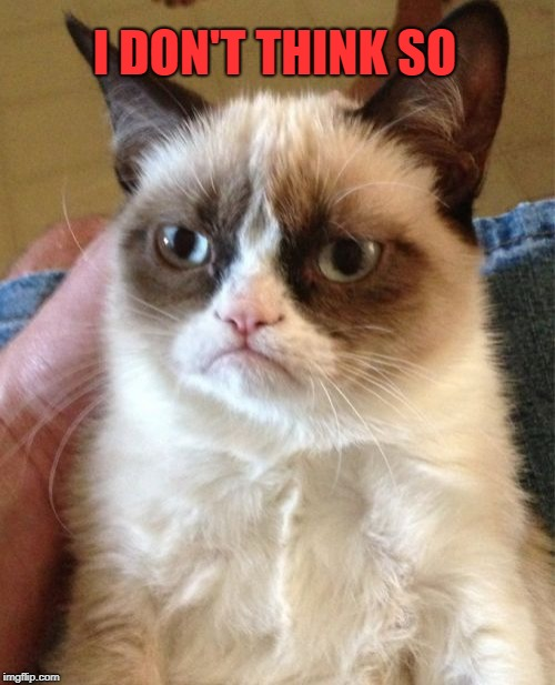 Grumpy Cat Meme | I DON'T THINK SO | image tagged in memes,grumpy cat | made w/ Imgflip meme maker