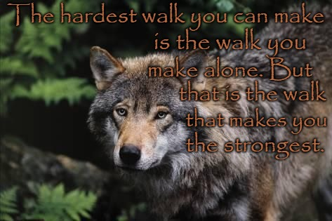 Wolf Wisdom The Hardest Walk You Can Make Is The Walk You Make Alone | The hardest walk you can make is the walk you make alone. But that is the walk that makes you the strongest. | image tagged in wolf,wolves,animals,native american,native americans,chief | made w/ Imgflip meme maker
