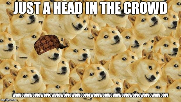 Multi Doge | JUST A HEAD IN THE CROWD WOWOWOWOWOWOWOWWOWOWOWOWOOWOWOWWOOWOWOWOWOWOWOWOWOWOWOOW | image tagged in memes,multi doge,scumbag | made w/ Imgflip meme maker