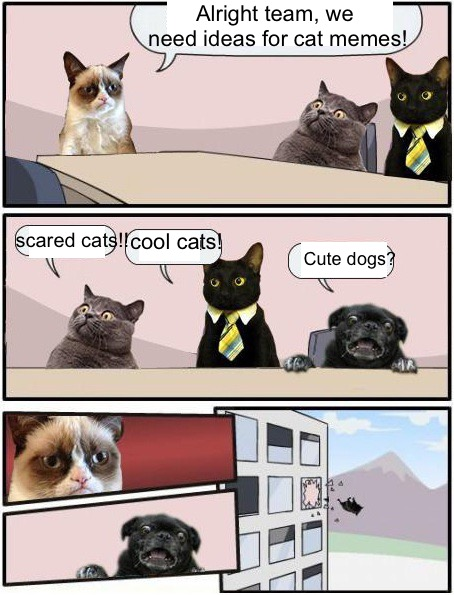 Purrfect Boardroom Meeting Suggestion | scared cats!! cool cats! Cute dogs? Alright team, we need ideas for cat memes! | image tagged in memes,boardroom meeting suggestion,grumpy cat,business cat,surprised cat | made w/ Imgflip meme maker