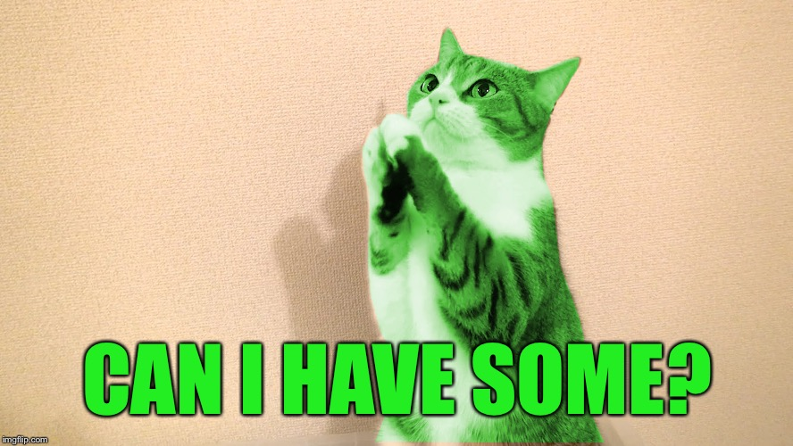 RayCat Pray | CAN I HAVE SOME? | image tagged in raycat pray | made w/ Imgflip meme maker