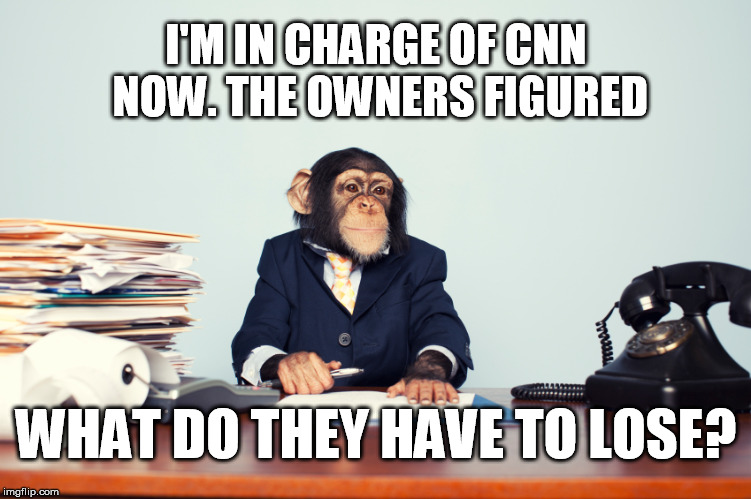I'M IN CHARGE OF CNN NOW. THE OWNERS FIGURED WHAT DO THEY HAVE TO LOSE? | image tagged in cnn | made w/ Imgflip meme maker