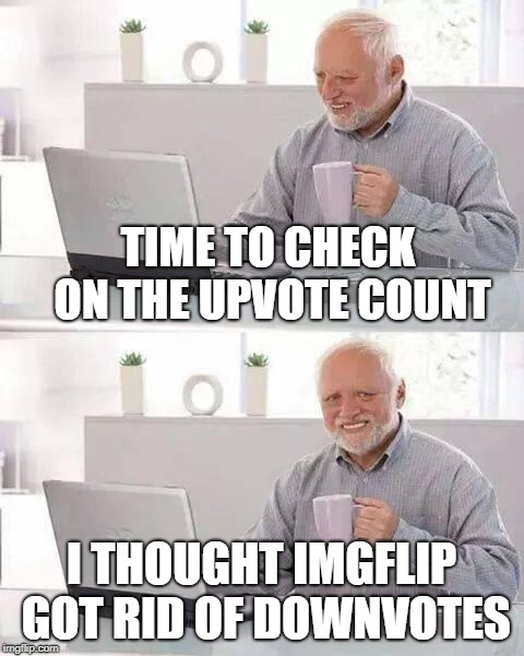 Not For Harold | TIME TO CHECK ON THE UPVOTE COUNT I THOUGHT IMGFLIP GOT RID OF DOWNVOTES | image tagged in memes,hide the pain harold,imgflip | made w/ Imgflip meme maker