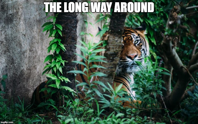 THE LONG WAY AROUND | image tagged in the long way around | made w/ Imgflip meme maker