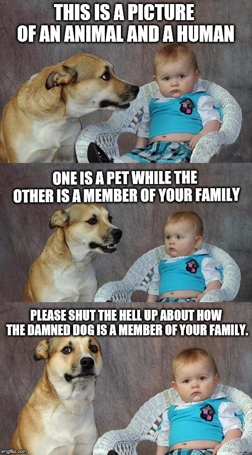 Dad Joke Dog Meme |  THIS IS A PICTURE OF AN ANIMAL AND A HUMAN; ONE IS A PET WHILE THE OTHER IS A MEMBER OF YOUR FAMILY; PLEASE SHUT THE HELL UP ABOUT HOW THE DAMNED DOG IS A MEMBER OF YOUR FAMILY. | image tagged in memes,dad joke dog | made w/ Imgflip meme maker