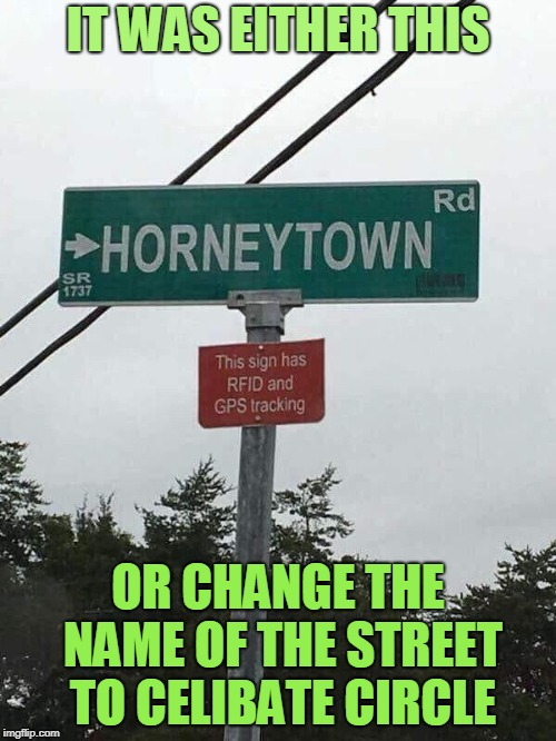 The Perverts Have Spoken! | IT WAS EITHER THIS OR CHANGE THE NAME OF THE STREET TO CELIBATE CIRCLE | image tagged in memes,perverts,street signs,funny street signs,gps,signs | made w/ Imgflip meme maker