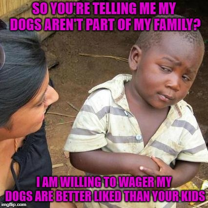 Third World Skeptical Kid Meme | SO YOU'RE TELLING ME MY DOGS AREN'T PART OF MY FAMILY? I AM WILLING TO WAGER MY DOGS ARE BETTER LIKED THAN YOUR KIDS | image tagged in memes,third world skeptical kid | made w/ Imgflip meme maker
