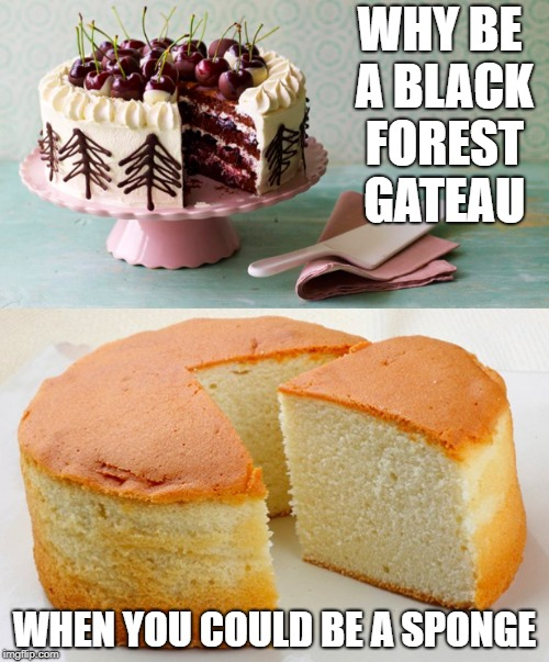 Black forest gateau Sponge | WHY BE A BLACK FOREST GATEAU WHEN YOU COULD BE A SPONGE | image tagged in politics | made w/ Imgflip meme maker