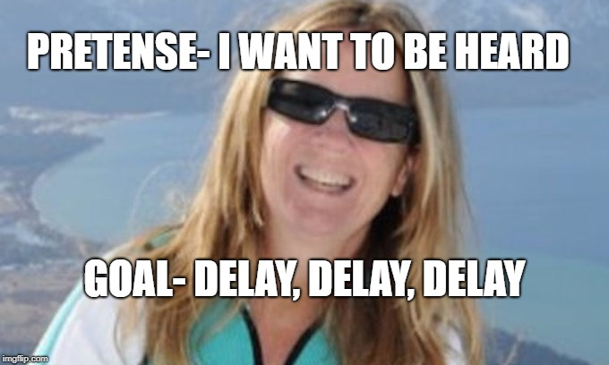 Christine Blasey Ford | PRETENSE- I WANT TO BE HEARD GOAL- DELAY, DELAY, DELAY | image tagged in christine ford,christine blasey ford,brett kavanaugh,kavanaugh | made w/ Imgflip meme maker