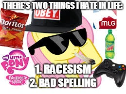 Dank MLG Pony Meme | THERE'S TWO THINGS I HATE IN LIFE: 2. BAD SPELLING 1. RACESISM | image tagged in mlg pony,memes,mlg,dank,dank mlg pony memes,an octavia_melody event | made w/ Imgflip meme maker