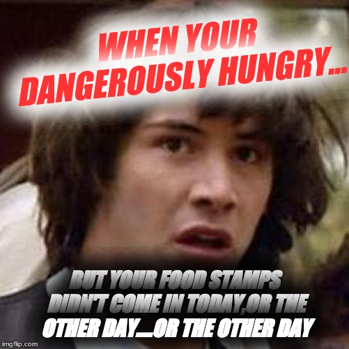 Conspiracy Keanu Meme | WHEN YOUR DANGEROUSLY HUNGRY... BUT YOUR FOOD STAMPS DIDN'T COME IN TODAY,OR THE OTHER DAY....OR THE OTHER DAY | image tagged in memes,conspiracy keanu | made w/ Imgflip meme maker