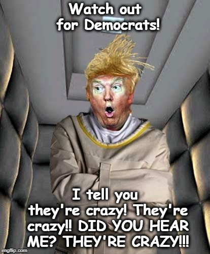 Watch out for Democrats! I tell you they're crazy! They're crazy!! DID YOU HEAR ME? THEY'RE CRAZY!!! | image tagged in trump,crazy | made w/ Imgflip meme maker