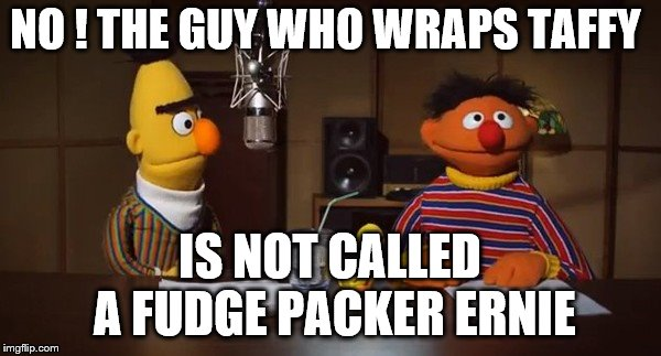 fudge packing | NO ! THE GUY WHO WRAPS TAFFY IS NOT CALLED A FUDGE PACKER ERNIE | image tagged in bert and ernie,gay,muppets | made w/ Imgflip meme maker