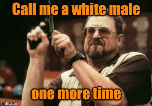 Am I The Only One Around Here Meme | Call me a white male one more time | image tagged in memes,am i the only one around here | made w/ Imgflip meme maker
