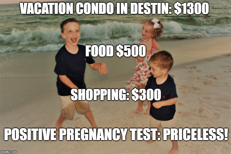 VACATION CONDO IN DESTIN: $1300 FOOD $500 SHOPPING: $300 POSITIVE PREGNANCY TEST: PRICELESS! | image tagged in test,pregnant,pregnancy test,vacation | made w/ Imgflip meme maker