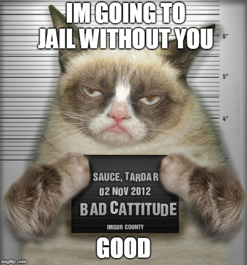 grumpy cat going to jail alone <GOOD! | IM GOING TO JAIL WITHOUT YOU GOOD | image tagged in grumps going to jail,happy without u | made w/ Imgflip meme maker