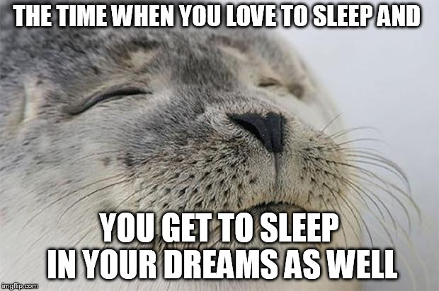 Satisfied Seal | THE TIME WHEN YOU LOVE TO SLEEP AND YOU GET TO SLEEP IN YOUR DREAMS AS WELL | image tagged in memes,satisfied seal | made w/ Imgflip meme maker