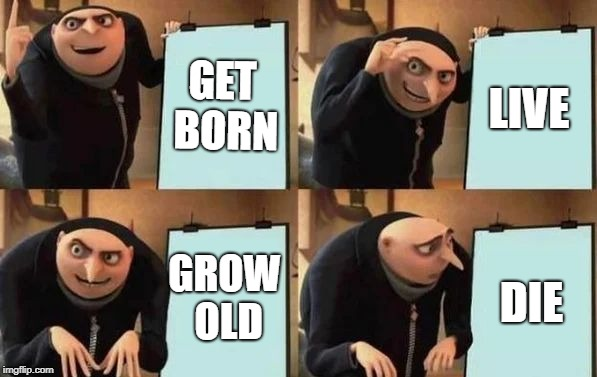 Everybody's plan, if you think about it | GET BORN LIVE GROW OLD DIE | image tagged in gru's plan | made w/ Imgflip meme maker