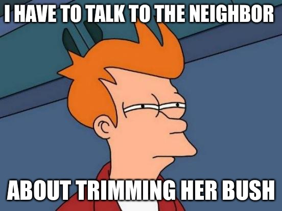 Futurama Fry Meme | I HAVE TO TALK TO THE NEIGHBOR ABOUT TRIMMING HER BUSH | image tagged in memes,futurama fry | made w/ Imgflip meme maker