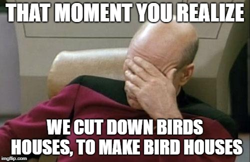 i mean... we do. |  THAT MOMENT YOU REALIZE; WE CUT DOWN BIRDS HOUSES, TO MAKE BIRD HOUSES | image tagged in memes,captain picard facepalm,birds,houses,bird houses | made w/ Imgflip meme maker