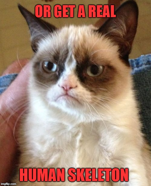 Grumpy Cat Meme | OR GET A REAL HUMAN SKELETON | image tagged in memes,grumpy cat | made w/ Imgflip meme maker