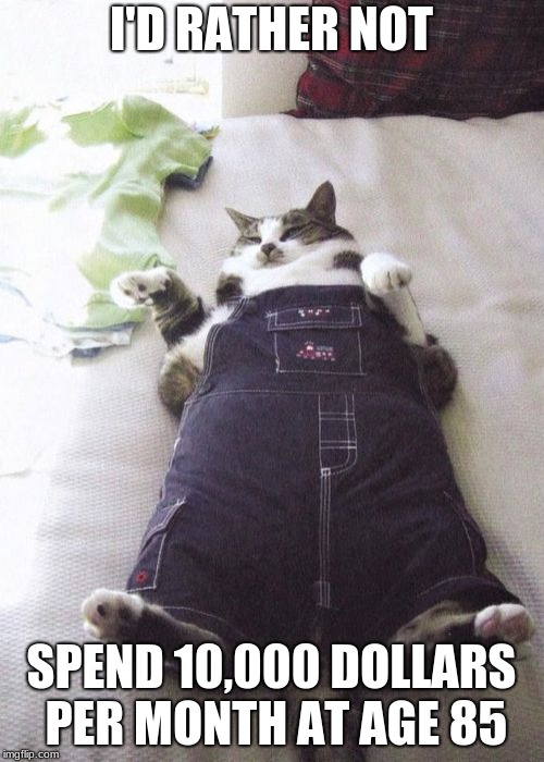 Fat Cat Meme | I'D RATHER NOT SPEND 10,000 DOLLARS PER MONTH AT AGE 85 | image tagged in memes,fat cat | made w/ Imgflip meme maker