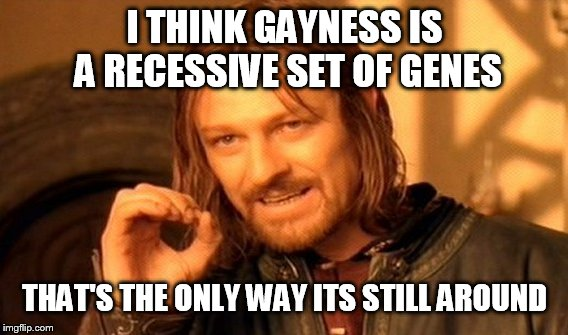 One Does Not Simply Meme | I THINK GAYNESS IS A RECESSIVE SET OF GENES THAT'S THE ONLY WAY ITS STILL AROUND | image tagged in memes,one does not simply | made w/ Imgflip meme maker