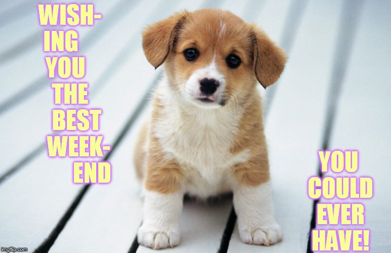 WISH- ING       YOU       THE       BEST     WEEK-          END YOU COULD EVER HAVE! | made w/ Imgflip meme maker