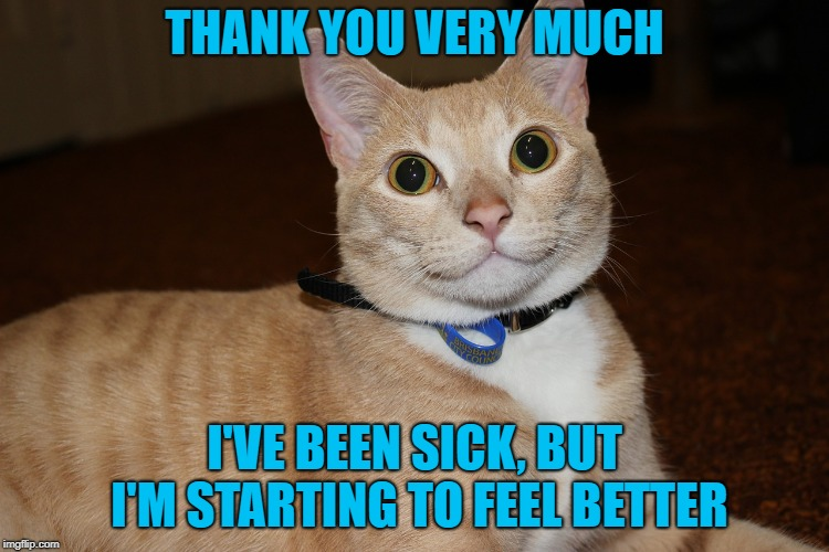 THANK YOU VERY MUCH I'VE BEEN SICK, BUT I'M STARTING TO FEEL BETTER | made w/ Imgflip meme maker
