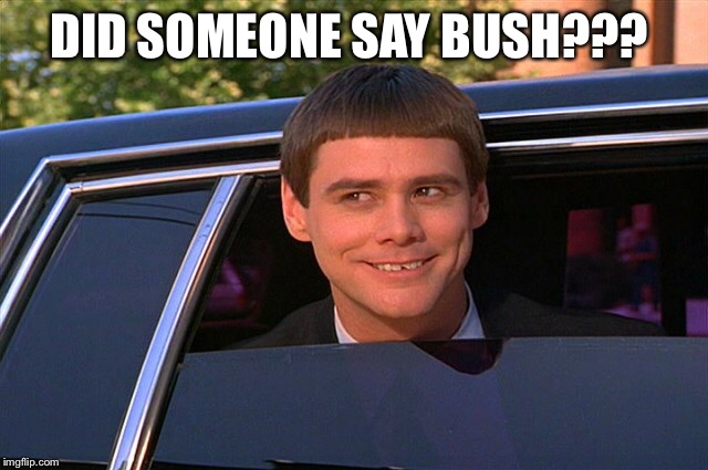 Did someone say whisky? | DID SOMEONE SAY BUSH??? | image tagged in did someone say whisky | made w/ Imgflip meme maker