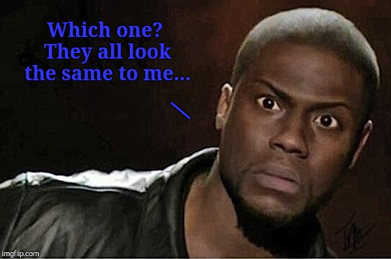 Kevin Hart Meme | Which one? They all look the same to me... | image tagged in memes,kevin hart | made w/ Imgflip meme maker
