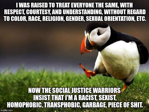 I was raised to treat everyone the same... | I WAS RAISED TO TREAT EVERYONE THE SAME, WITH RESPECT, COURTESY, AND UNDERSTANDING, WITHOUT REGARD TO COLOR, RACE, RELIGION, GENDER, SEXUAL  | image tagged in memes,unpopular opinion puffin,social justice warriors,racism,sexism,homophobia | made w/ Imgflip meme maker