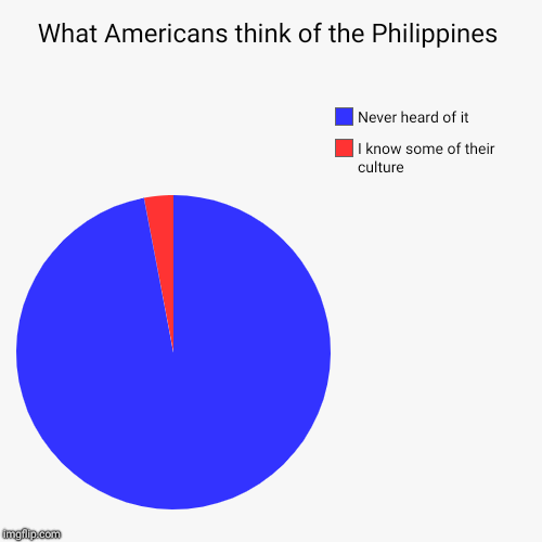 What Americans think of the Philippines | I know some of their culture, Never heard of it | image tagged in funny,pie charts | made w/ Imgflip pie chart maker