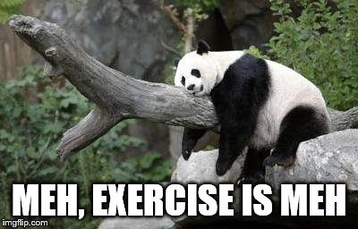 lazy panda | MEH, EXERCISE IS MEH | image tagged in lazy panda | made w/ Imgflip meme maker