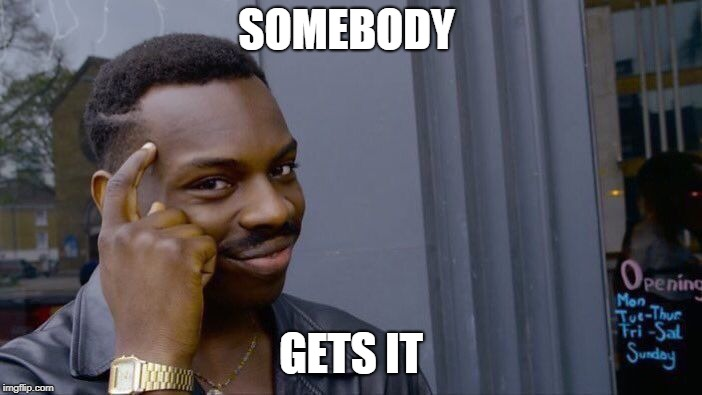Roll Safe Think About It Meme | SOMEBODY GETS IT | image tagged in memes,roll safe think about it | made w/ Imgflip meme maker