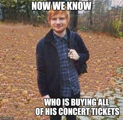 The only face in the crowd  | NOW WE KNOW WHO IS BUYING ALL OF HIS CONCERT TICKETS | image tagged in memes,ed sheeran,funny,music | made w/ Imgflip meme maker