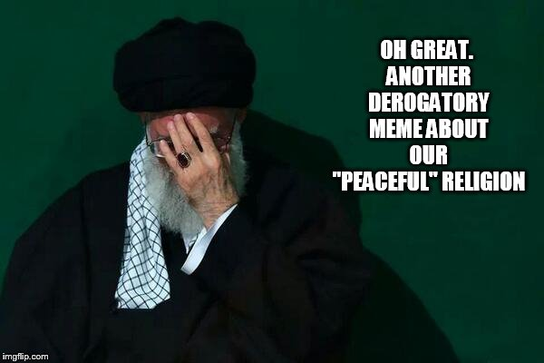 "OH GREAT. ANOTHER DEROGATORY MEME ABOUT OUR ""PEACEFUL"" RELIGION 