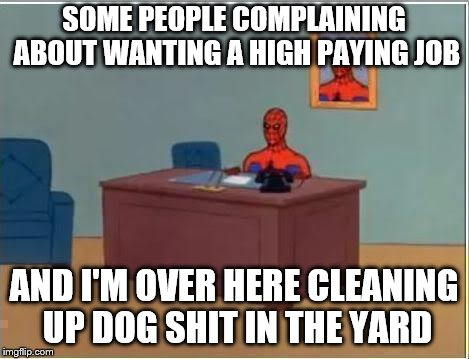 Yup | SOME PEOPLE COMPLAINING ABOUT WANTING A HIGH PAYING JOB AND I'M OVER HERE CLEANING UP DOG SHIT IN THE YARD | image tagged in memes,spiderman computer desk,spiderman | made w/ Imgflip meme maker