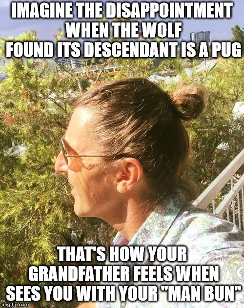 "IMAGINE THE DISAPPOINTMENT WHEN THE WOLF FOUND ITS DESCENDANT IS A PUG THAT'S HOW YOUR GRANDFATHER FEELS WHEN SEES YOU WITH YOUR ""MAN BUN"" 