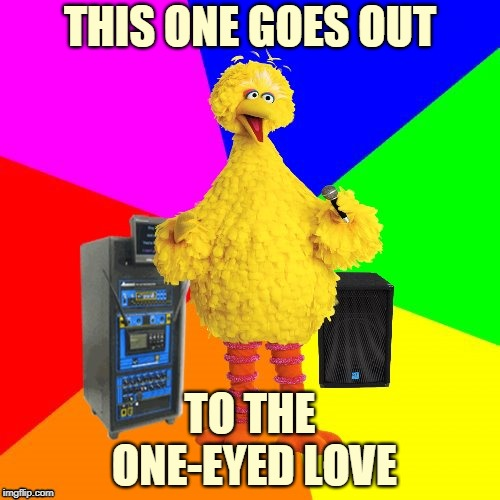 Don't laugh. This one actually took me a long time to think of. | THIS ONE GOES OUT TO THE ONE-EYED LOVE | image tagged in wrong lyrics karaoke big bird,memes,rem,music,80s music,the one i love | made w/ Imgflip meme maker