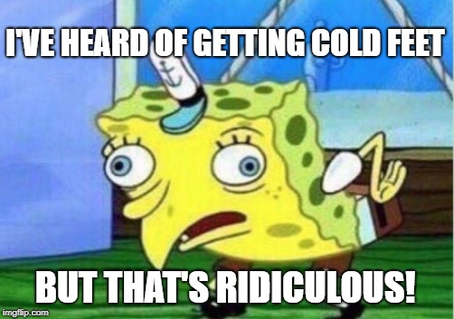 Mocking Spongebob Meme | I'VE HEARD OF GETTING COLD FEET BUT THAT'S RIDICULOUS! | image tagged in memes,mocking spongebob | made w/ Imgflip meme maker